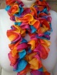Rainbow Ruffle Scarf